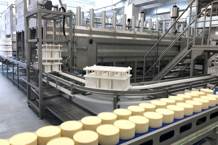 Production of cheese pressed #5
