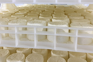 NEW MOULDERS	 FOR FRESH CHEESE