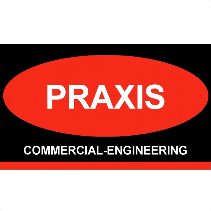 PRAXIS Commercial Engineering P.C.