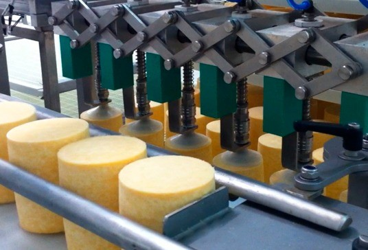 Automatic loading of cheeses on shelves with trays #3