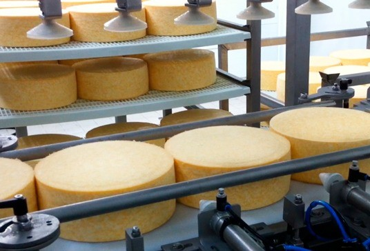 Automatic loading of cheeses on shelves with trays #1